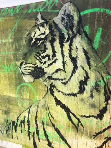 Dario Vella-Tigre